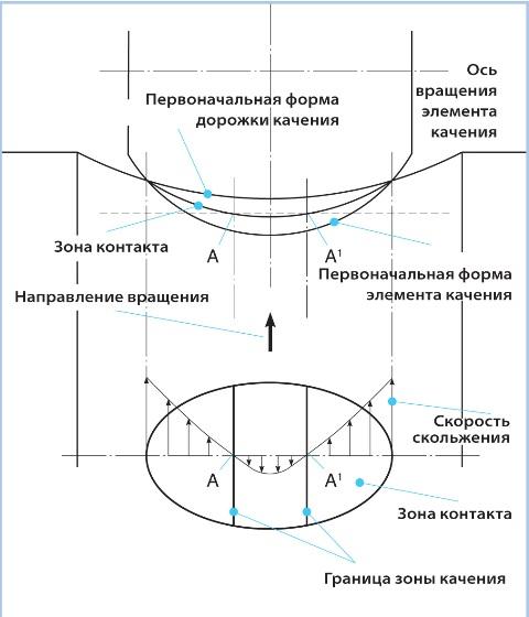 Контакт тело качения-дорожка качения с изогнутой поверхностью контакта и влияние упругой деформации. Эта иллюстрация демонстрирует трение скольжения.